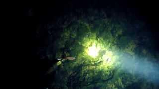 Поиск раков с фонариком. Охота на раков.