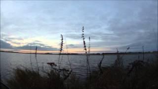 Последняя охота на гусей в 27.10.2013 - Канада.