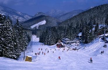 Зимние каникулы в Карпатах