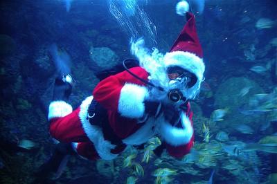 Новый Год под водой, баротравма кишечного тракта.