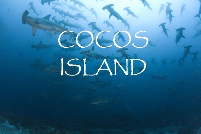 Кокосовые острова, лучшие кадры