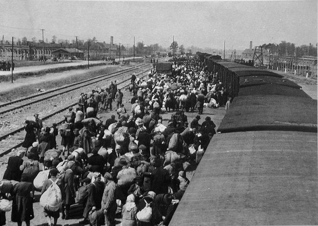 Фильм: Освенцим - путешествие в АД