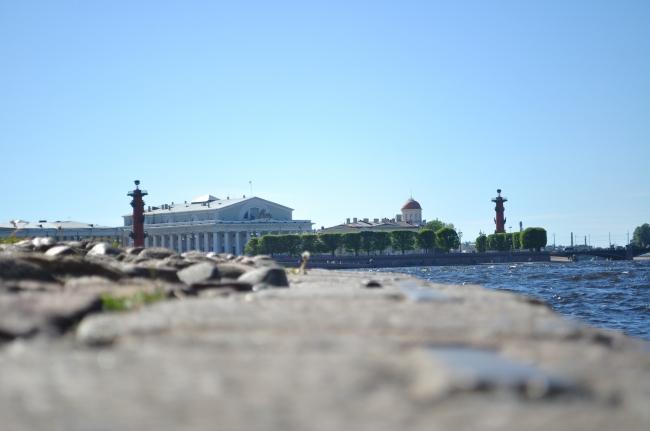 Васильевский остров станет нашим Монмартром