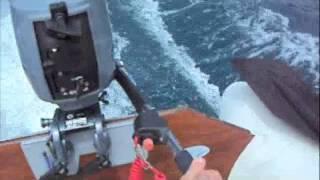 Новая Зеландия Фрэнч Пасс и Дюрвиль рыбалка,охота