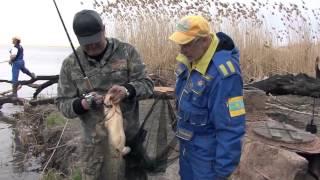 Рыбалка на сома на базе Кигач, Казахстан