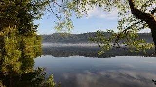 Телецкое озеро - день очистки водоемов