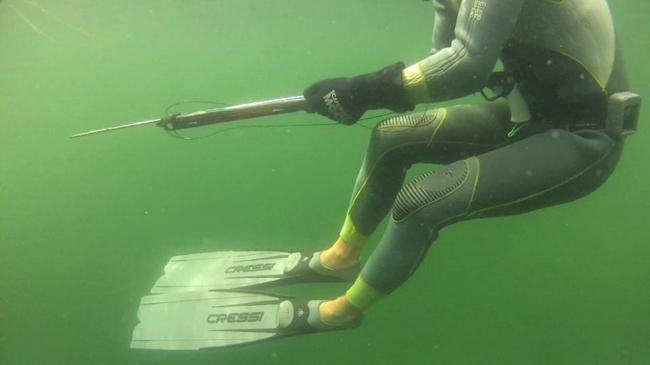 Фридайвинга и подводная охота в Норвегии.