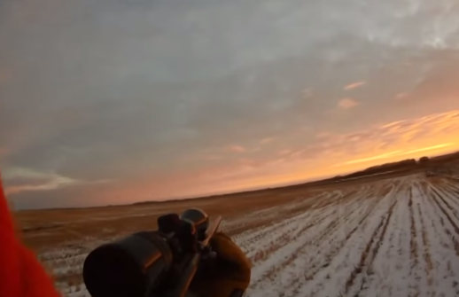 Охотился на оленя. Часть 1. Ноябрь 2014. Канада