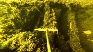 Подводная охота на судака осенью