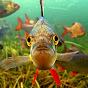 Underwaterireland