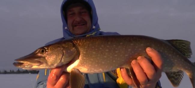 Рыбалка на Жерлицы, ловля щуки и окуня. Салым декабрь