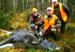 Охота на лося в Финляндии
