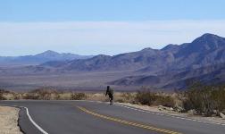 Клэй Шэнк: приключения скейтбордиста в Калифорнии