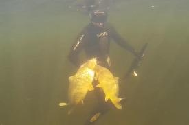 DEESUB: Подводная охота Волгоград