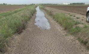 Nestle обвиняют в откачивании воды во время засухи