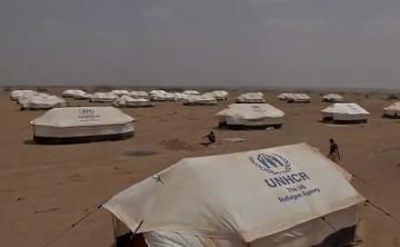 Беженцев в мире стало больше на 11 млн