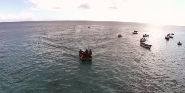 Подводная охота на желтоперого тунца возле о. Вознесения
