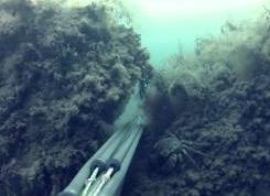 Аkm S: Подводная охота Черное море 31.05.06