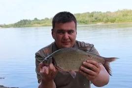 Дневник рыболова: Выходные с фидером на реке