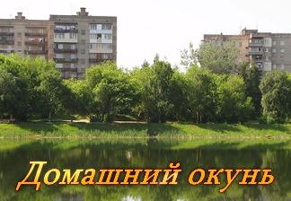 Ловля окуня с Константином Кузьминым