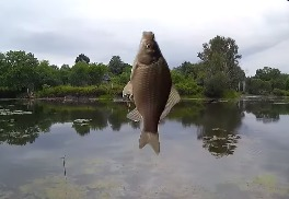 Ловля карася, еще одна хреновая рыбалка