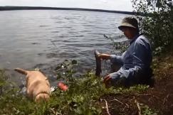 Канадский бирюк: Ягодно-рыбно лабазно-лесные дела (часть 36)