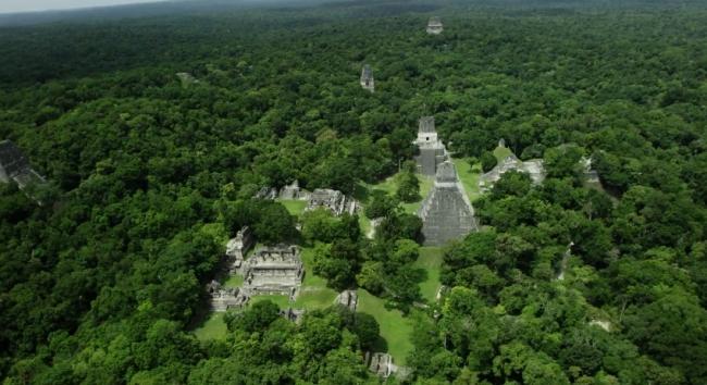 Тикаль - древний город майя (фото и видео)