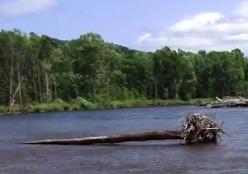 Александр Белов: Репортаж о поездке на реку Мо