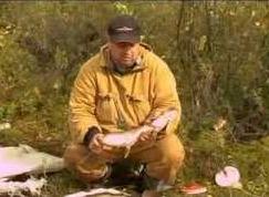 Щука на поппер | Сибирская рыбалка 1