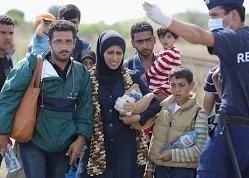 В Венгрии мигрантов свозят в новый лагерь на границе