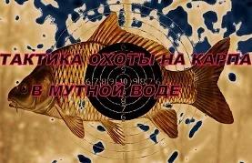 Дмитрий Темников: Тактика охоты в мутной воде
