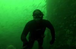 Fish dvoyka: Подводная охота в Норвегии собираем гребешка 2015