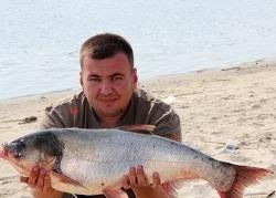 Дневник рыболова: Рыбалка и отдых на реке Дон