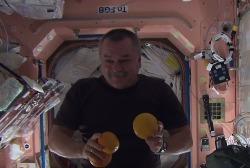 Экипаж МКС: Как развлекается в космосе