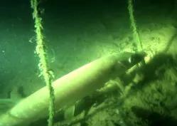 Роман Болдов: Подводная охота 2015 (Мелочь - тоже рыба)