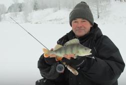 Ловля окуня зимой с балансиром в коряжнике