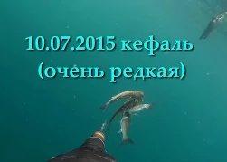 Denis Aleks: Подводная охота в Крыму, Ялта кефаль на 15м