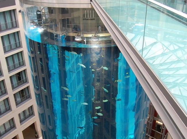 AquaDom - правильный аквариум