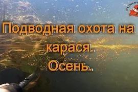 Казак Сергей: Подводная охота на карася. Осень.