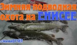 Владислав Владимирович: Зимняя подводная охота на Енисее