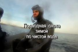 Подводная охота зимой по чистой воде (февраль)
