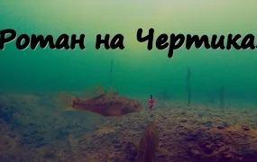 Сергей Сорокин: Ловля Ротана на Чертика (Подводное видео)
