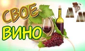 Сделать домашнее виноградное вино может каждый из нас