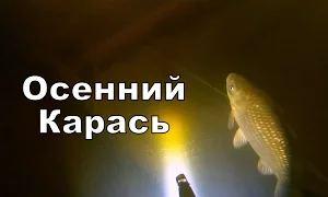 Александр Бухонин: Подводная охота (Осенний карась)