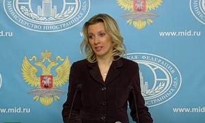 Брифинг Марии Захаровой (14.01.2016)