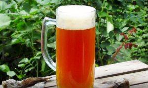 Эль Янтарный - Рецепт домашнего пива