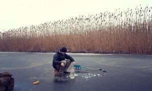 Always Alone: Ловля живца. Как я ловлю живца, для ловли щуки на жерлицы.