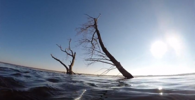 Васильков Дмитрий: Подводная охота на сома в марте