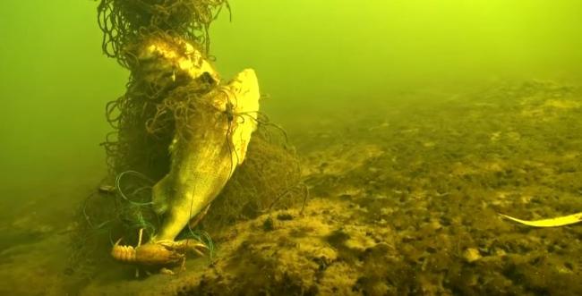 Браконьерские сети с мертвой рыбой