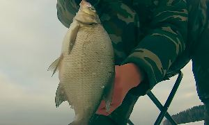 Сергей Сорокин: Зимняя рыбалка. Ловля леща и плотвы. Подводная камера